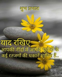 Flower Good Morning Pics in Hindi