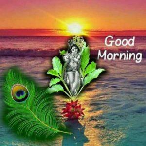 God Krishna Good Morning Pic