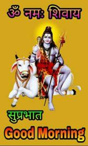 Good Morning Images God Shiva