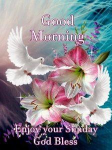 Good Morning Images on Sunday