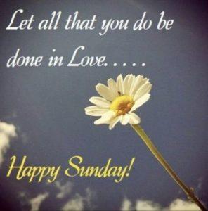 Happy Sunday Good Morning Pics Wallpaper