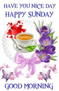 Happy Sunday Morning Image in Hindi