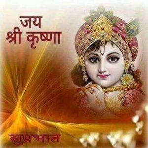 Jai Shree Krishna Good Morning Images