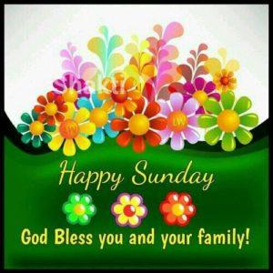 Sunday Flower Good Morning Images