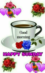 81 Sunday Good Morning Images In Hindi