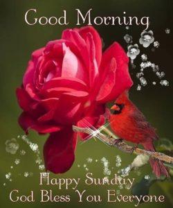 Sweet Good Morning Sunday Images