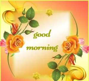 For You Beautiful Gud Mrng Photo Wallpaper Flower