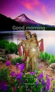 Good Morning Radhe Krishna Ji Image