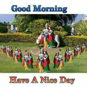 Good Morning Radhe Krishna Photo