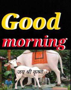 Good Morning Shukrawar Images