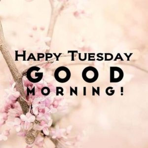 Good Morning Tuesday Images for Tuesday