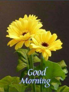 Gud Mrng Happy Flower Image