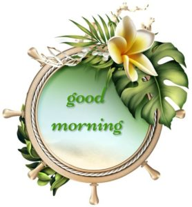 Happy Gud Mrng for Morning Image Pics