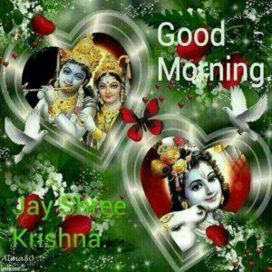 Jay Radhe Krishna Good Morning Images