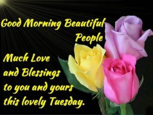 Lovely Good Morning Tuesday Image Wallpapers
