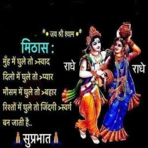 Radhe Krishna Good Morning Image in Hindi