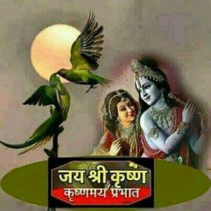 Radhe Krishna Good Morning Mobile Wallpaper