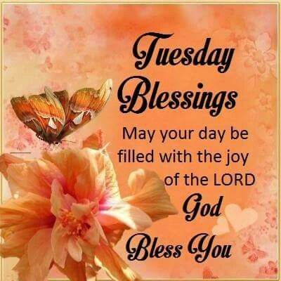 191 Good Morning Tuesday Images Wishes Photos And Wallpaper